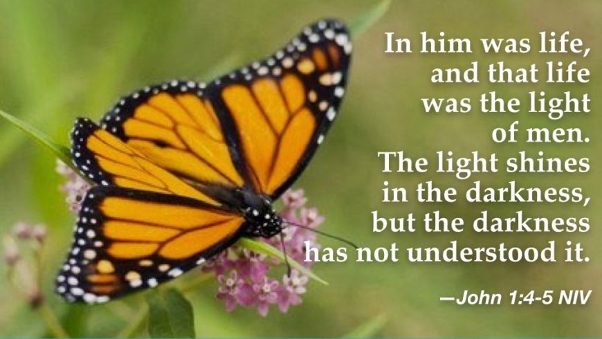 """""""In Him was life"""""""