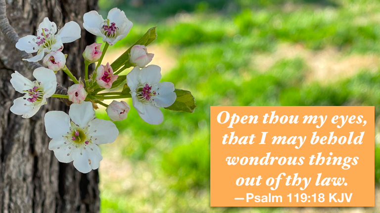 """Hymn day: """"Open My Eyes That I May See"""""""